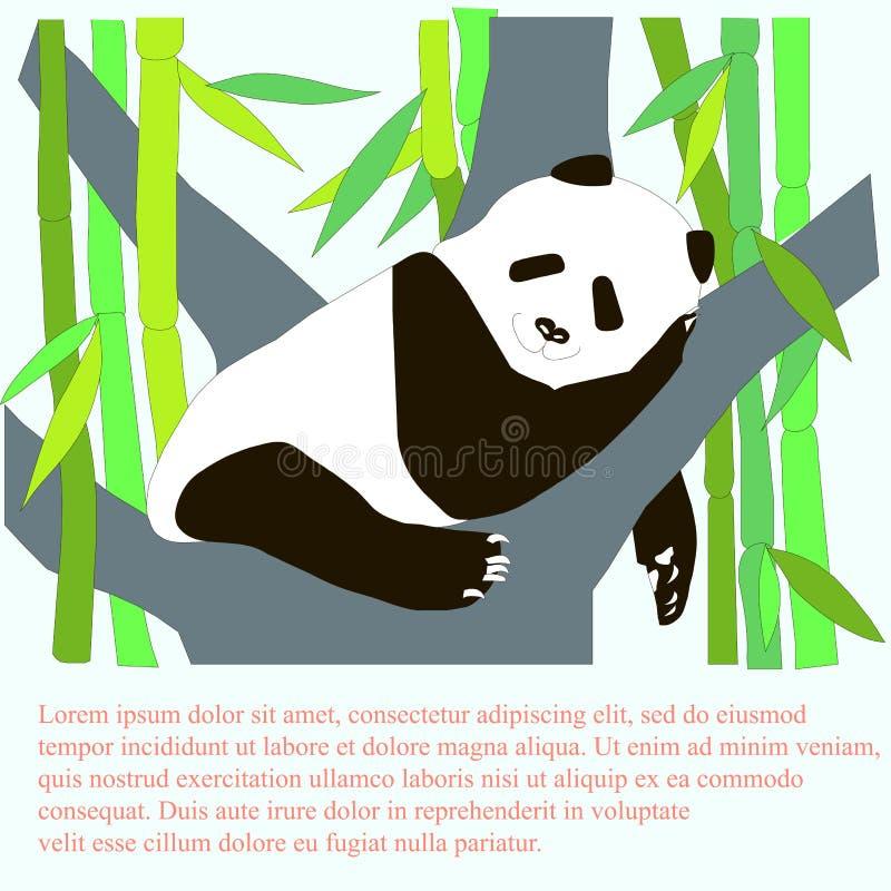 Sover den gulliga pandan för tecknade filmen på trädet, grön bambu, lorem ipsum Materielvektorillustration för baner vektor illustrationer