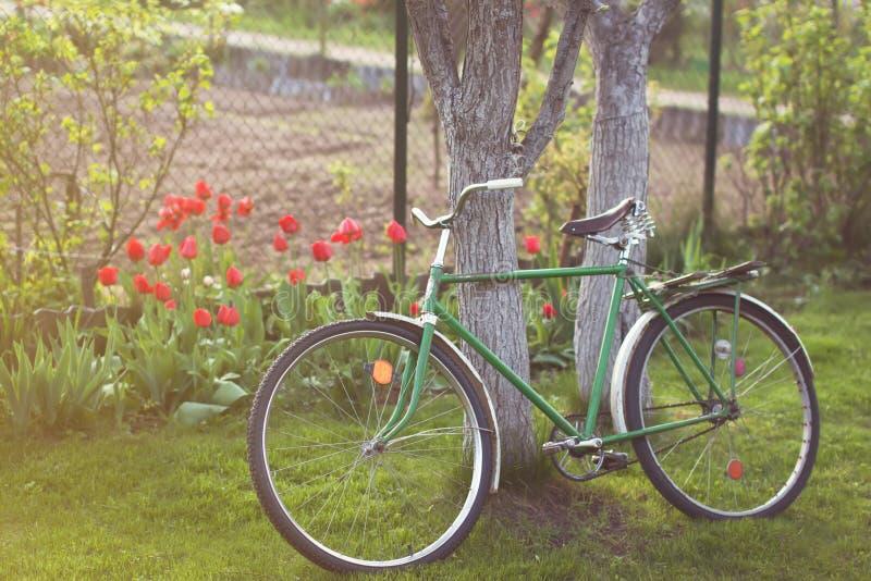 Sovjet uitstekende fiets in tuin stock fotografie