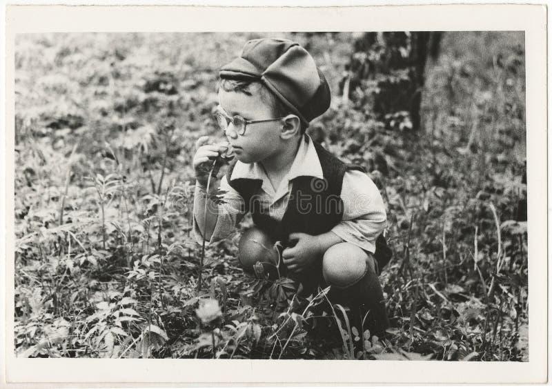 Sovjetiskt svartvitt ståendefotografi för Od av lite pojken arkivbild