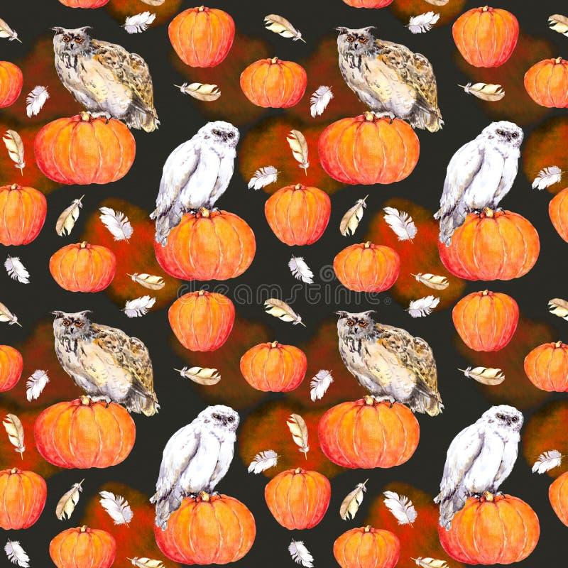 Sowa na bani Halloweenowej akwareli wielostrzałowy wzór zdjęcie royalty free