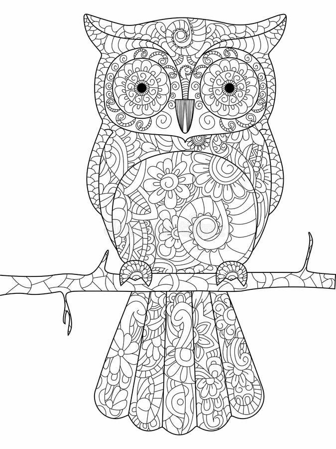 Sowa na gałęziastym kolorystyki książki wektorze dla dorosłych royalty ilustracja