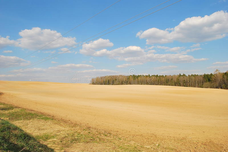 Sown field in the country side royalty free stock photo