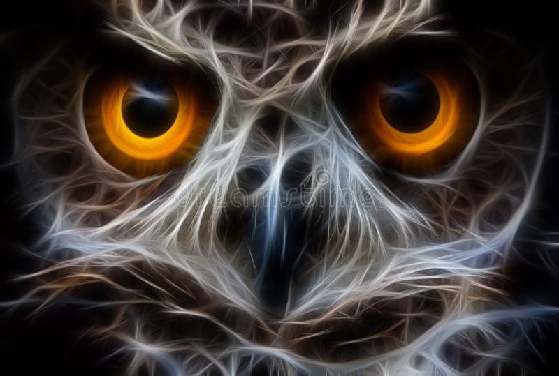 Sowy twarzy Ptasi zakończenie Up royalty ilustracja