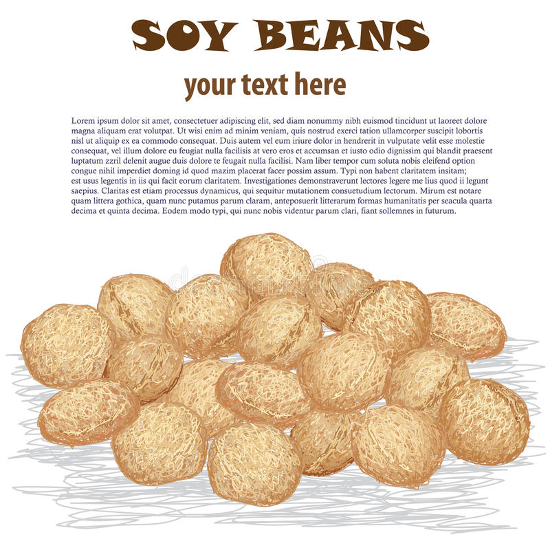 Soy beans. Closeup illustration of heap of soy beans isolated in white background stock illustration
