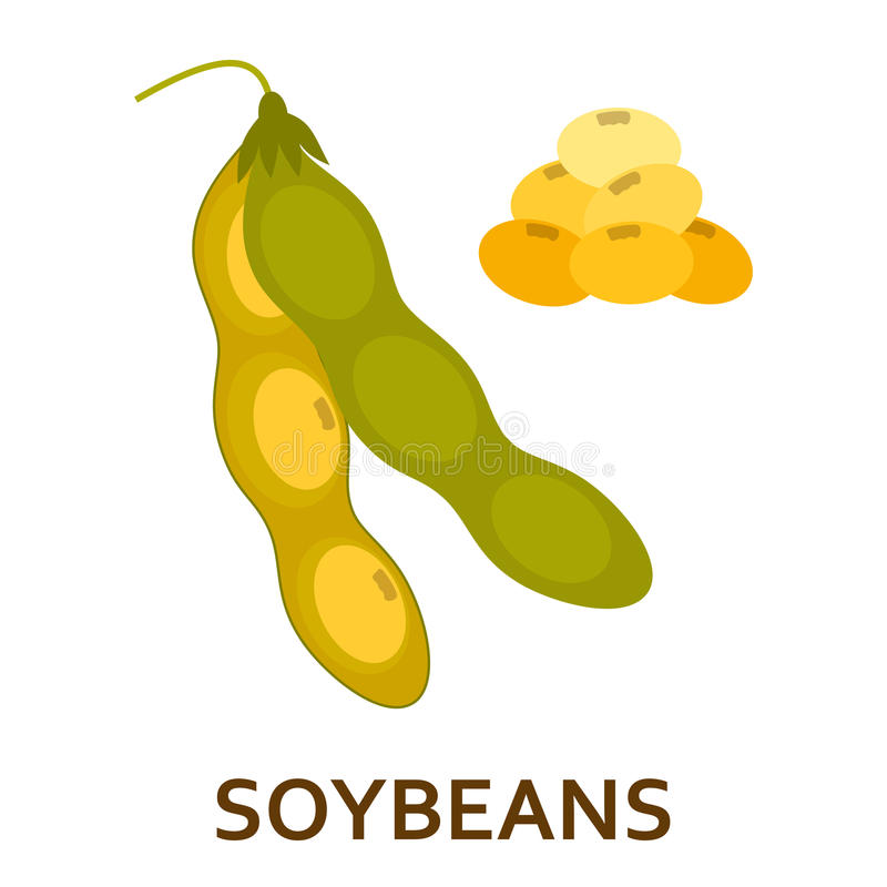 Soy beans color flat icon vector illustration