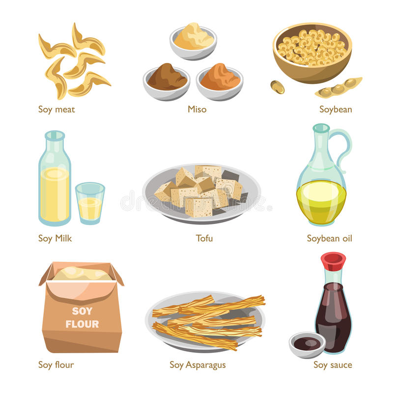 Soy containing products vector colorful poster on white. Soy containing product types vector colorful poster on white. Meal made of soybeans in solid consistency vector illustration