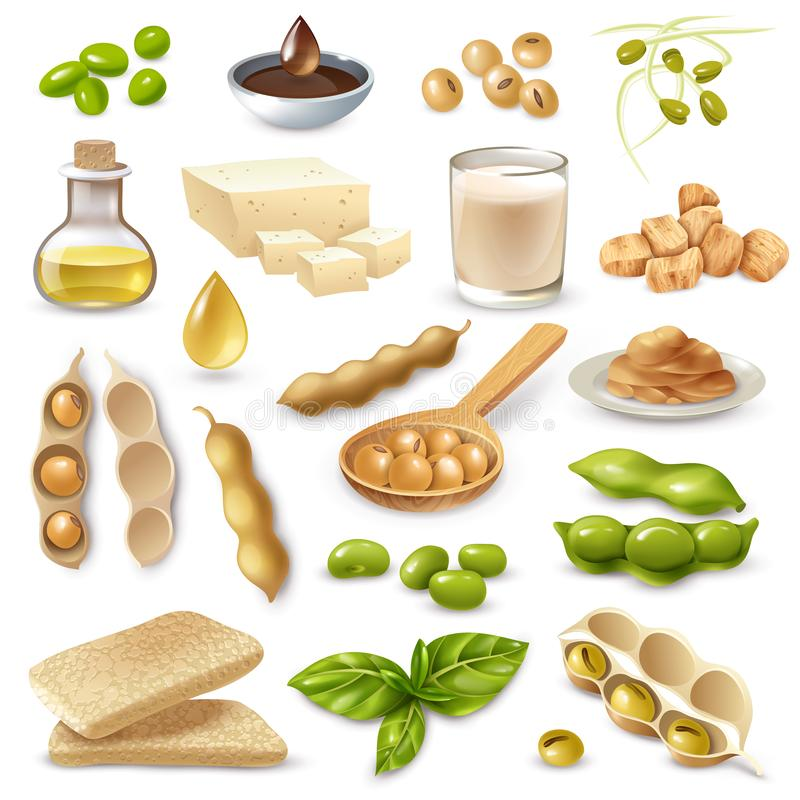 Soy Food Products Set. Set of soy food products with ripe beans and green leaves on white background isolated vector illustration vector illustration