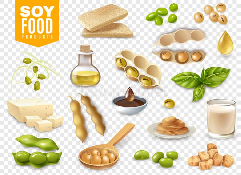 Soy Food Products Transparent Set. Set of beans with plant leaves and soy food products isolated on transparent background vector illustration vector illustration