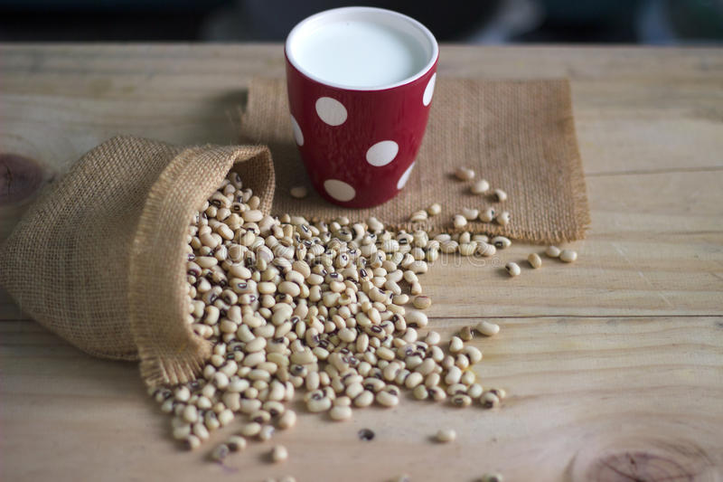 Soy milk in glass and soy bean on wooden table copy space stock image