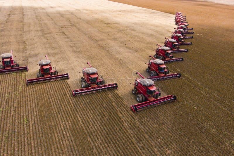 Soybean harvesting stock image