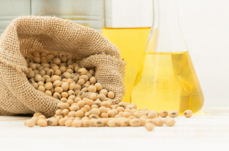 Soybean in hemp sack bag with oil in laboratory glass setup on wooden table. stock photos