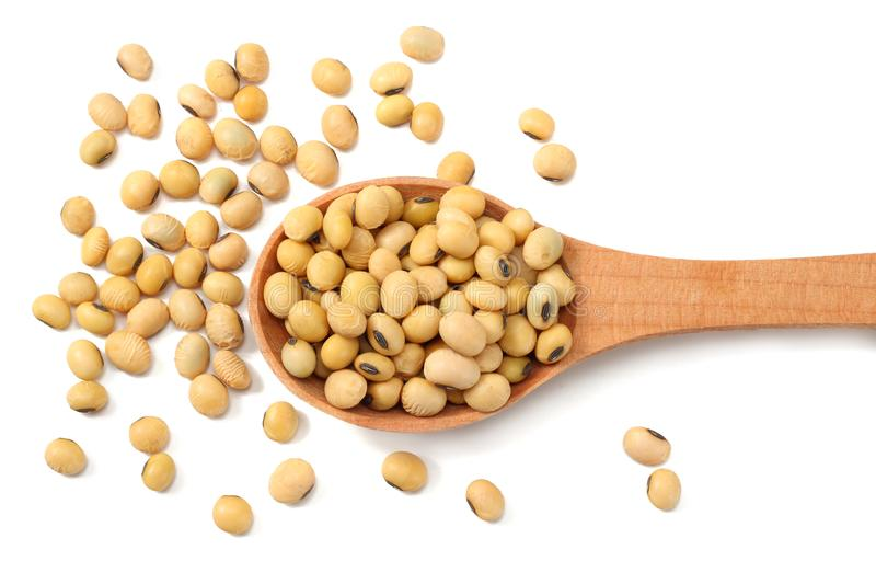 Soybeans in wooden spoon isolated on white background. top view stock photos