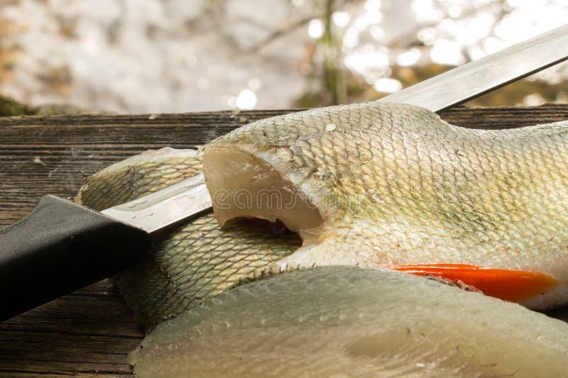 Soyez perché les filets et un couteau de découpage des filets de poissons avec photographie stock