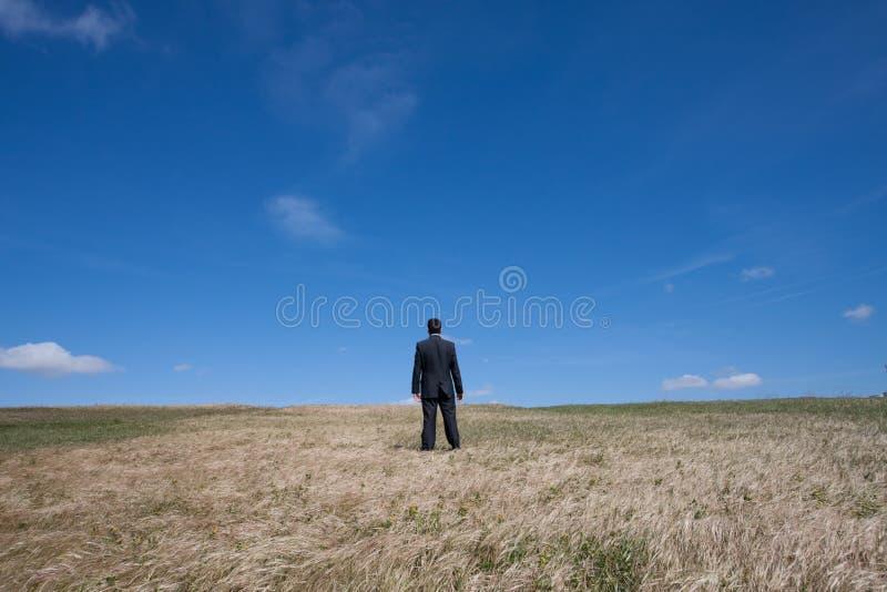 Sozinho no campo imagem de stock