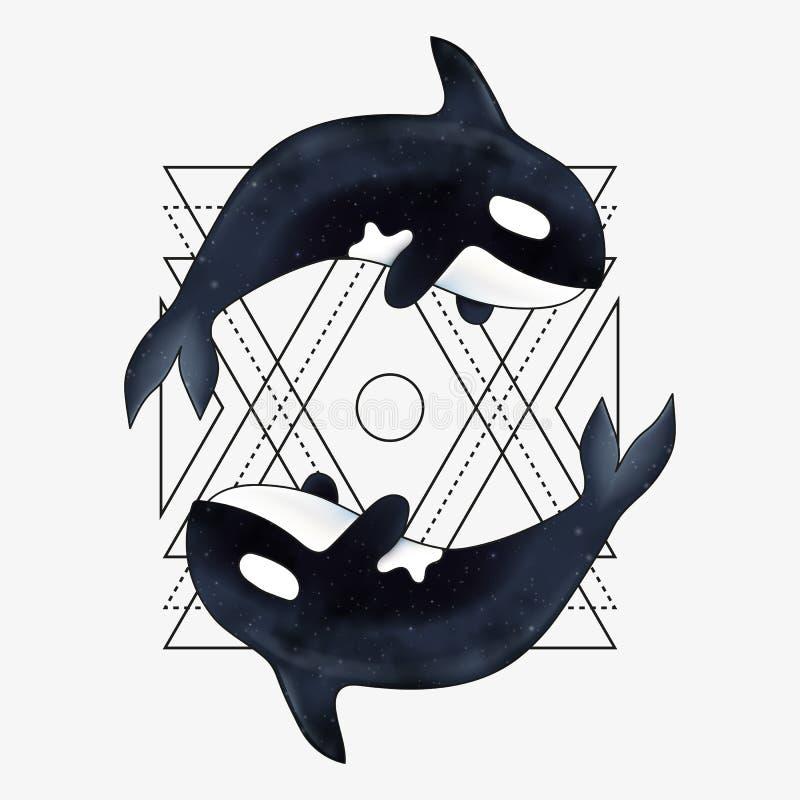 Späckhuggarevektorillustration Marin- däggdjur Späckhuggare med den abstrakta geometriska beståndsdelen stock illustrationer