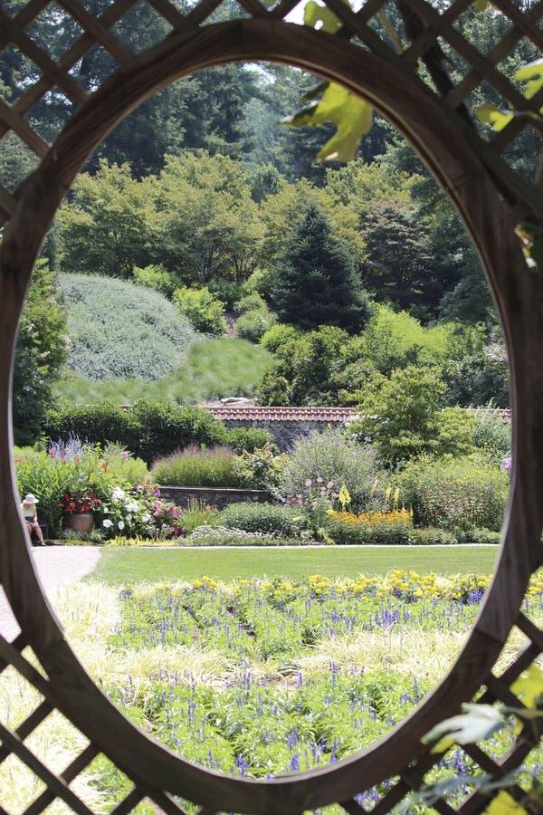 Spähen am Garten stockfotos