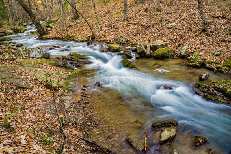 Später Autumn View des Brüllens des Laufnebenflusses lizenzfreie stockbilder