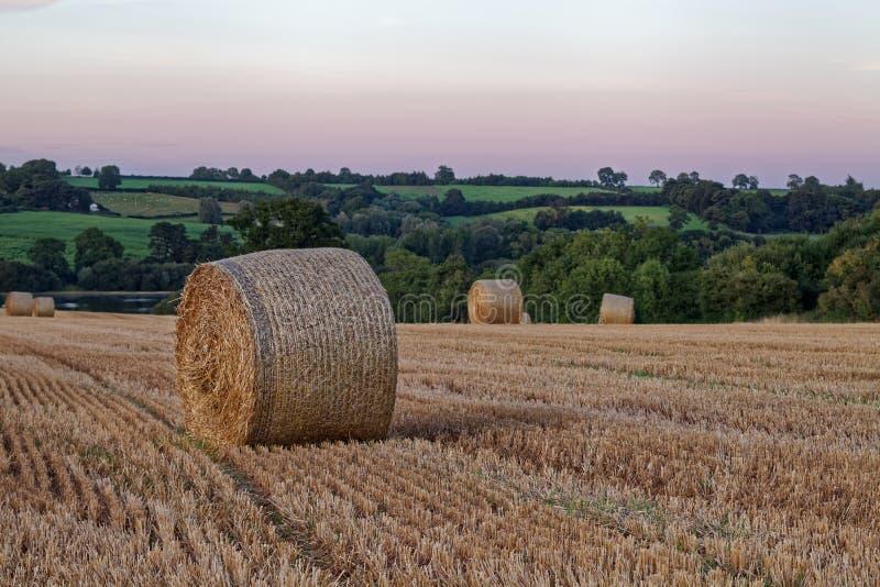 Spätsommersonnenuntergang über Feldern stockfotos