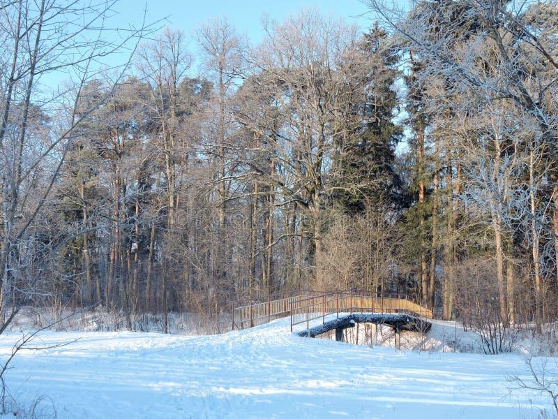 Spång över den Sysa floden i vinter, Litauen royaltyfri fotografi