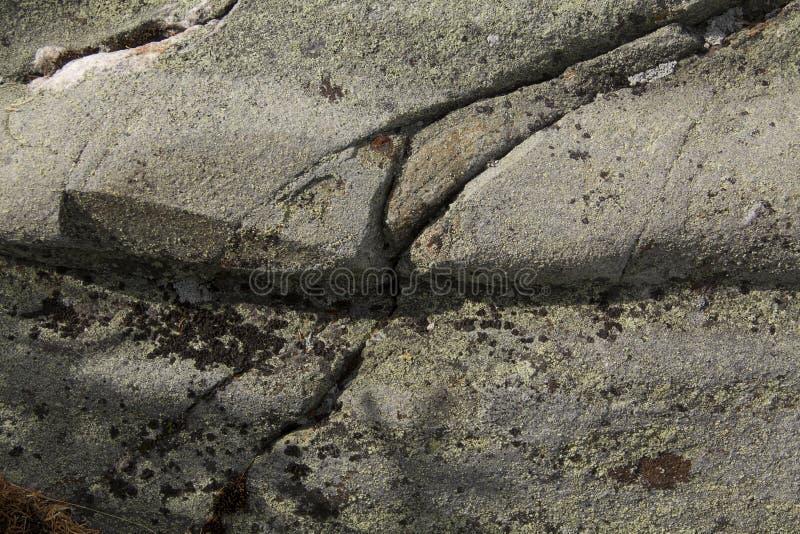Is- spår i granitberggrund, Mt Kearsarge New Hampshire arkivfoto