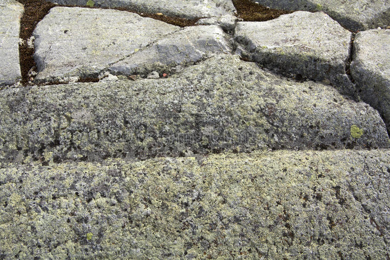 Is- spår i granitberggrund, Mt Kearsarge New Hampshire arkivbild