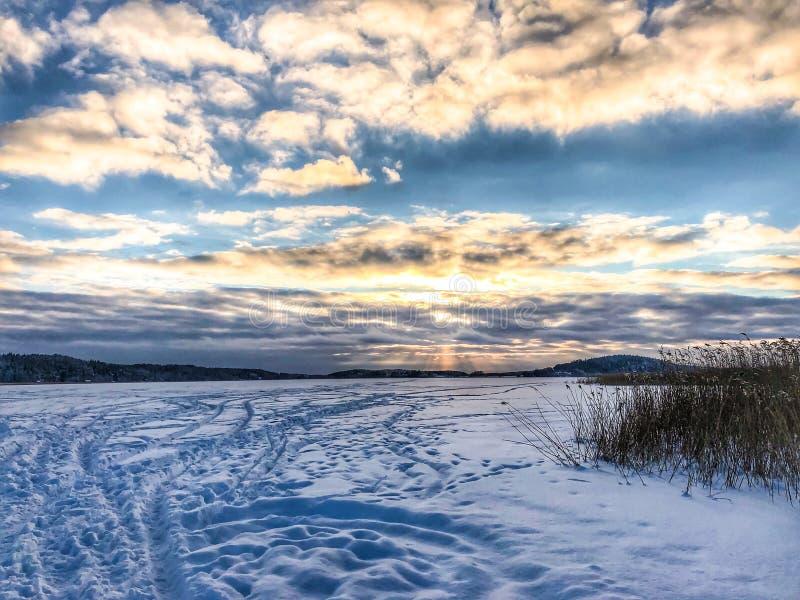 spår på is fotografering för bildbyråer