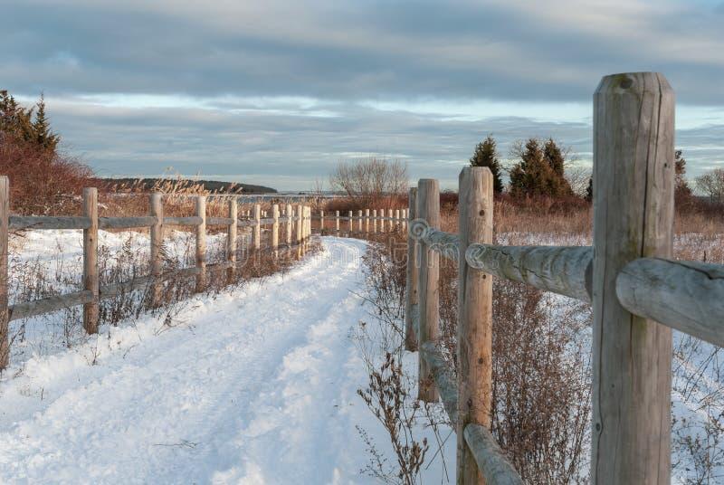 Spår som ska sättas på land längs den dolda cykelbanan för snö fotografering för bildbyråer