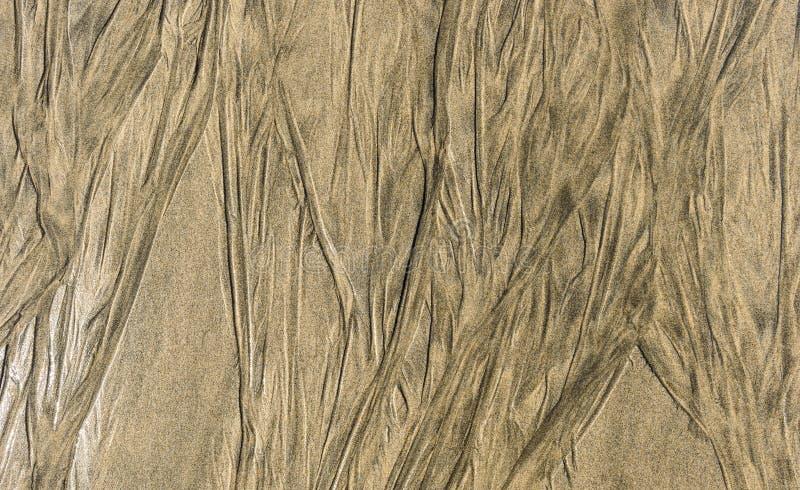 Spårar av tillbak av vatten på texturmodell för sandig strand tillbaka arkivfoto