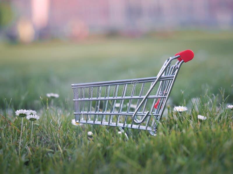 Spårvagn för supermarket på en gräsmatta av grönt gräs fotografering för bildbyråer