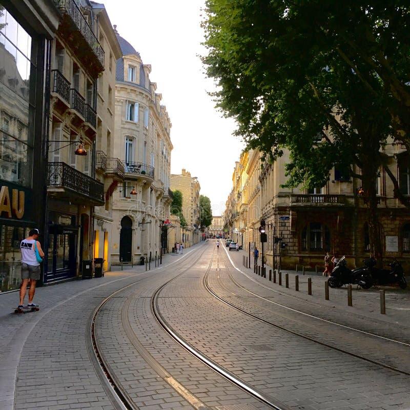 Spårvagnen fodrar i Bordeaux, Frankrike royaltyfria bilder