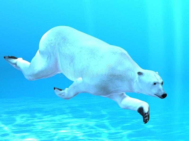 spójrz biegunowy bear royalty ilustracja