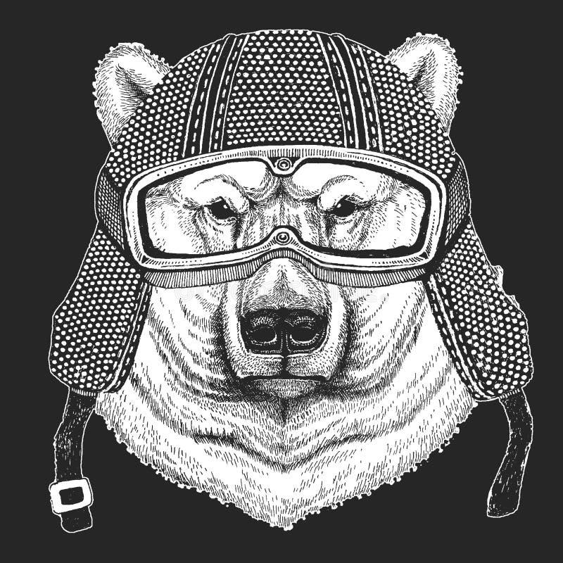 spójrz biegunowy bear Rocznika motocyklu hemlet Retro stylowa ilustracja z zwierzęcym rowerzystą dla dzieci, dzieciaki odziewa, k ilustracji
