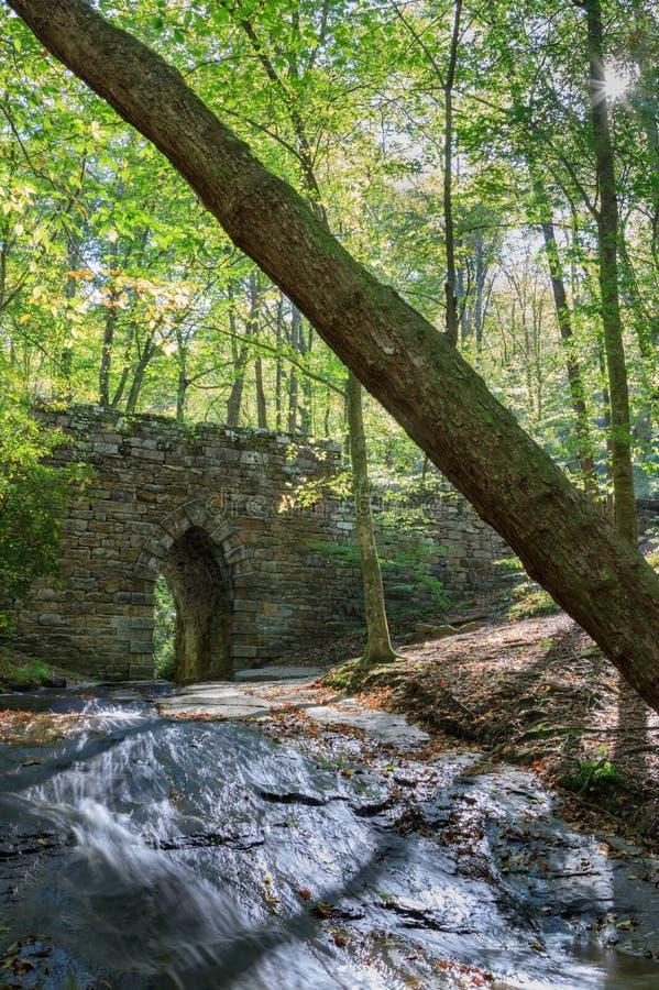 Spökad bro för SC Poinsett royaltyfri foto