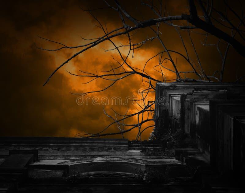 Spöklik forntida byggnad med fullmånen och fågeln, allhelgonaaftonbackg fotografering för bildbyråer