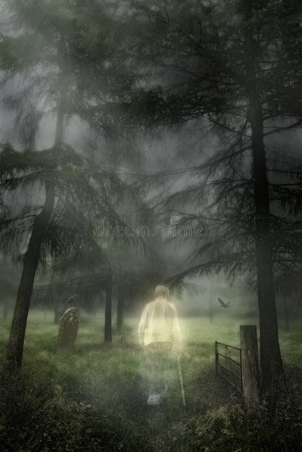 Spöklik gentleman royaltyfri fotografi