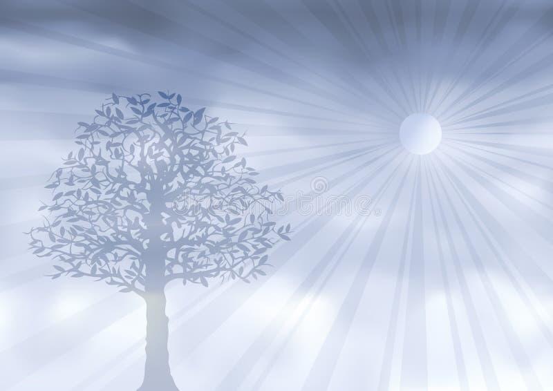 spöklik silvertree royaltyfri illustrationer