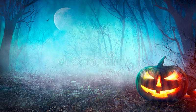 Spöklik skog för allhelgonaafton royaltyfria foton