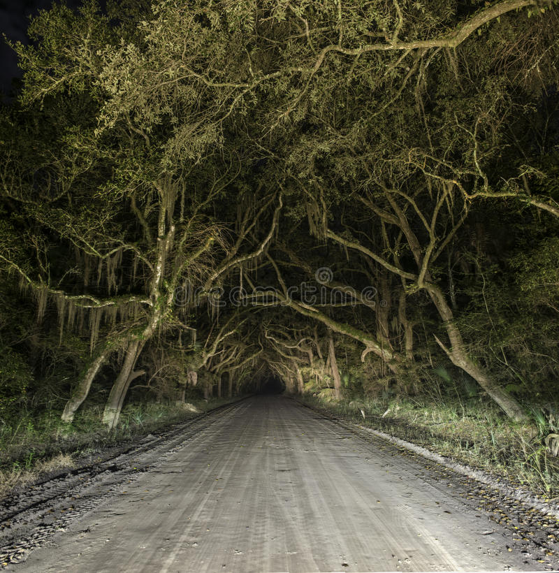 Spöklik spökad kuslig landsgrusväg royaltyfria bilder
