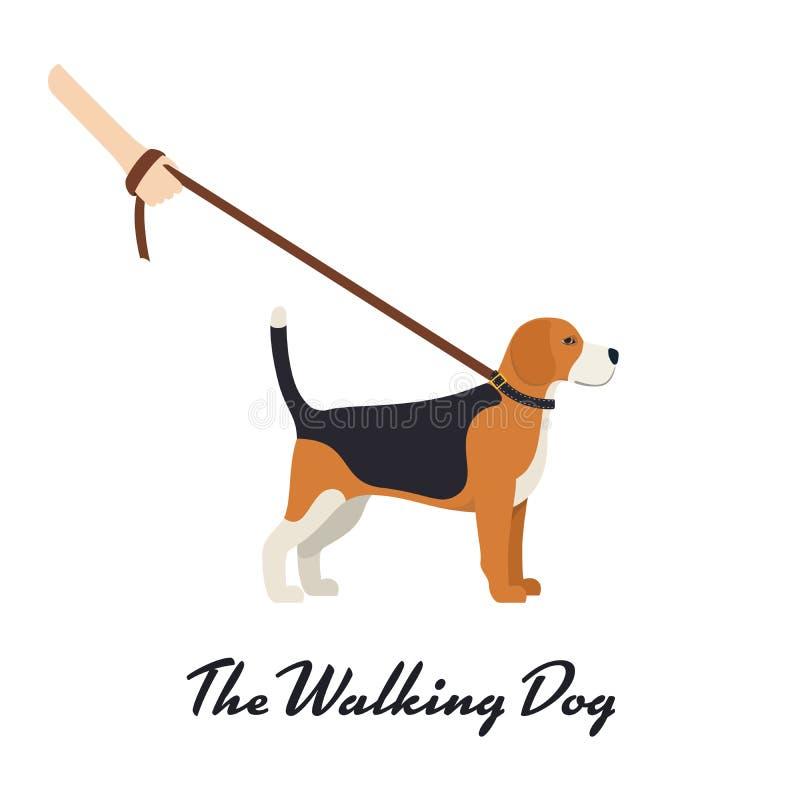 Spürhund-Hund mit einer Leine stock abbildung