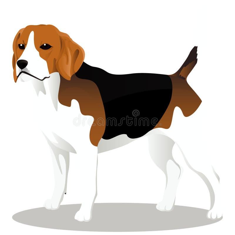 Spürhundkarikaturhund lizenzfreie abbildung