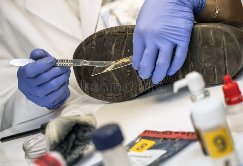 Sp?cialisant le policier analyse la terre dans le meurtre de la chaussure d'une victime avec les brucelles une images stock