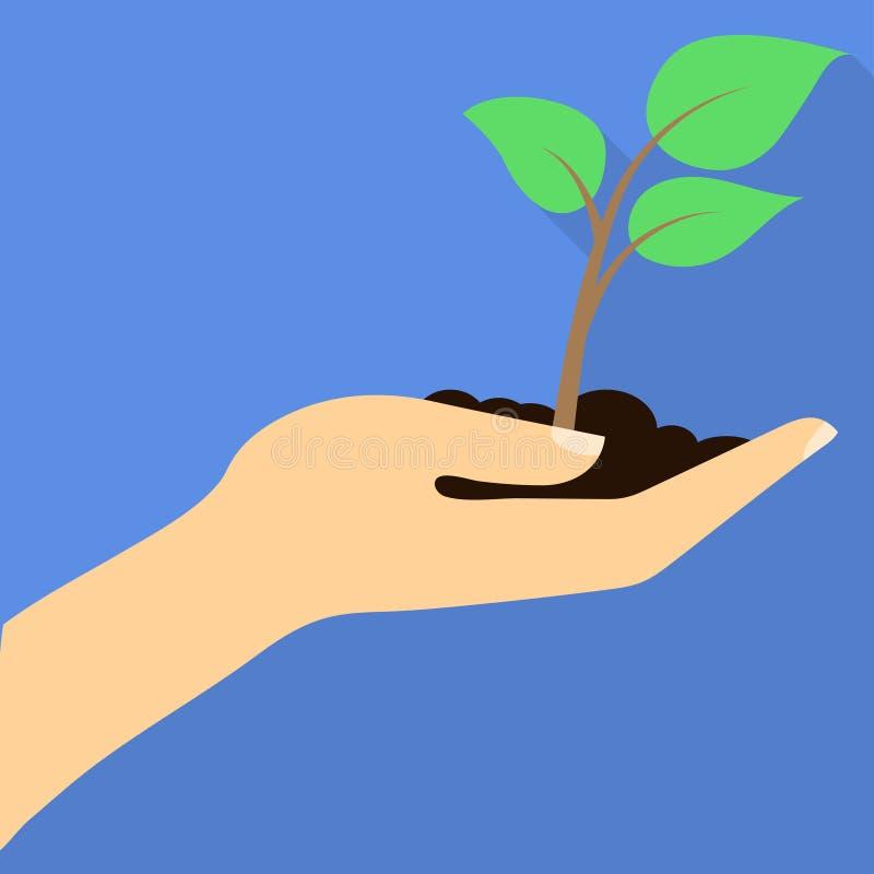 Spaß-Jungpflanze mit Boden in der Hand Flaches Design stock abbildung