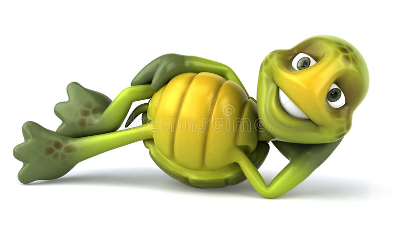 Spaßschildkröte stock abbildung