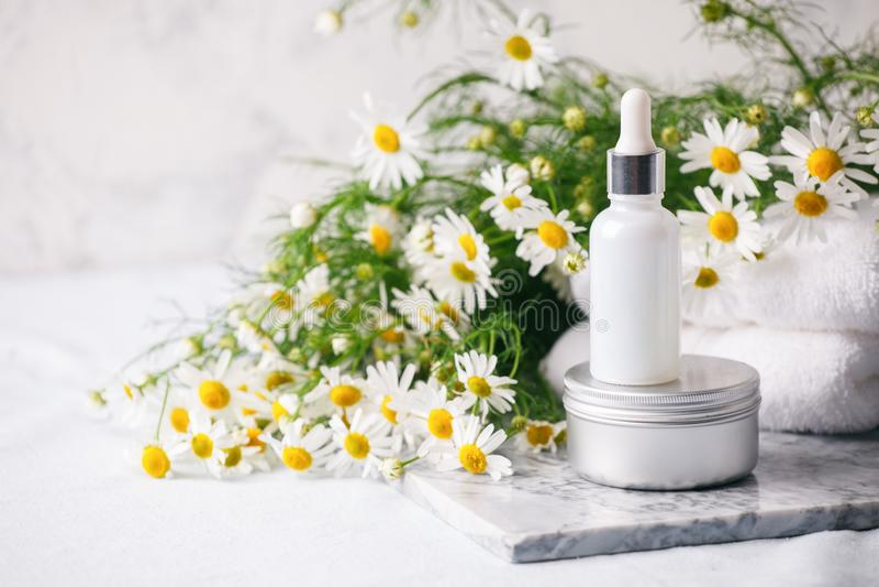 SPA και ρύθμιση wellness Σύνθεση με τα chamomile λουλούδια και το καλλυντικό μπουκάλι του ορού και της κρέμας ουσιαστικού πετρελα στοκ φωτογραφία