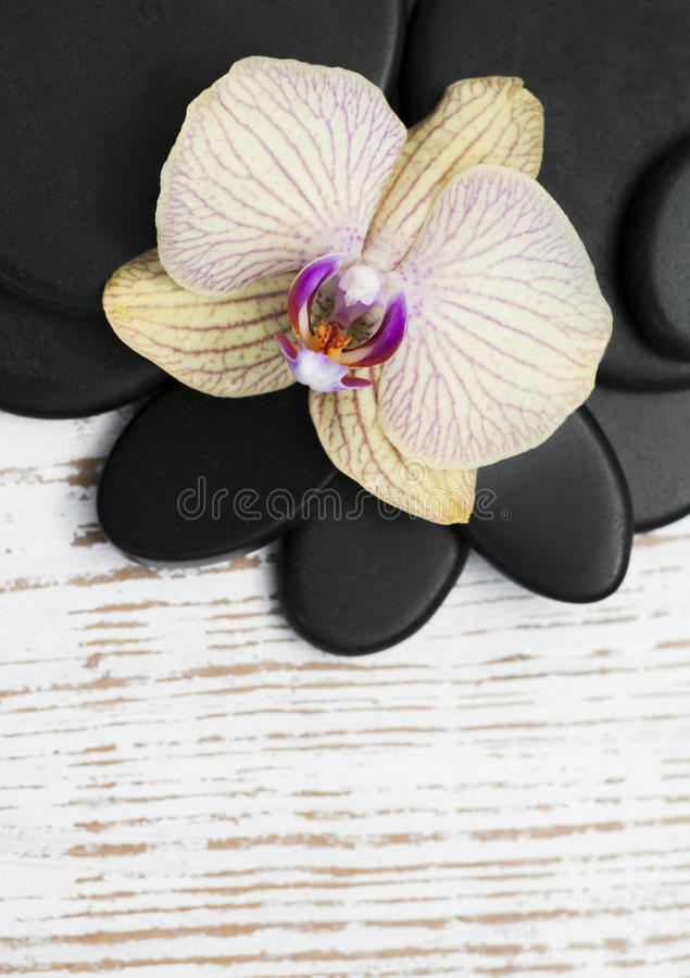 Spa Accessories. Spa stones, orchid flower heads on a wooden background stock images