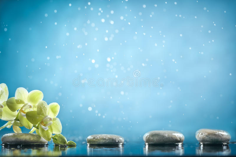 Spa Background Stock Image Of Serene Petal Wallpaper