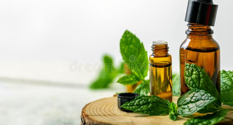 Spa background - mint essential oil bottles and green leaf with copy space stock photo