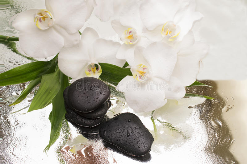 Spa Background - orchids black stones and bamboo on water royalty free stock image