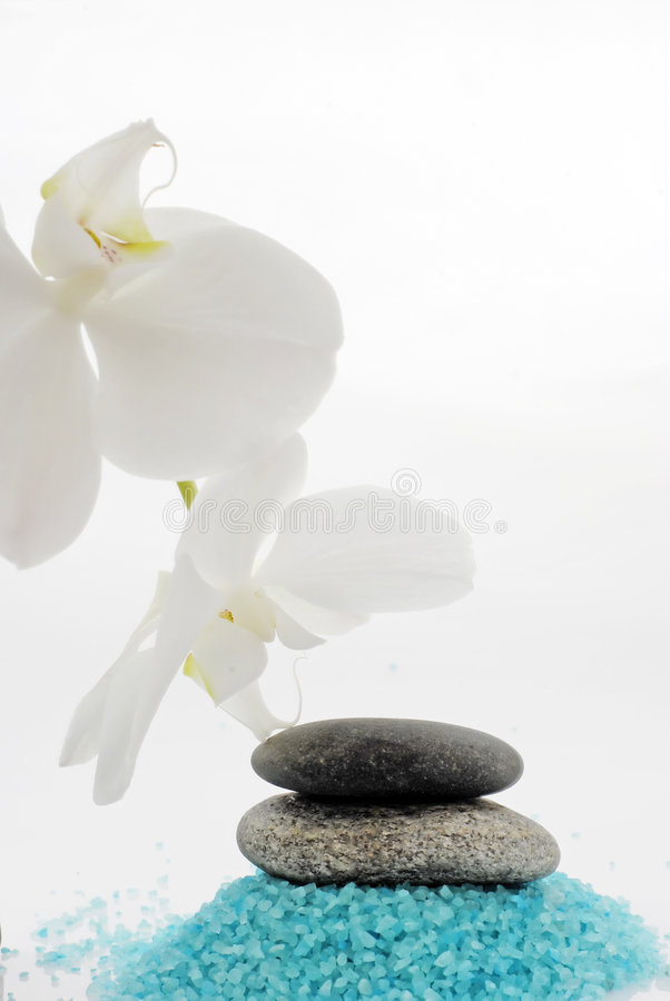 Download Spa - bath salt and orchid stock photo. Image of pebble - 6087732