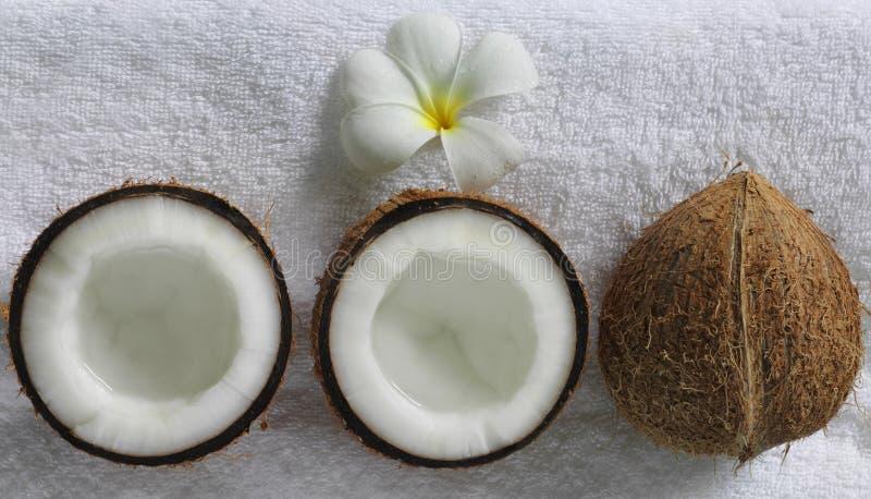 Download Spa beauty stock photo. Image of closeup, luxury, aroma - 7315756